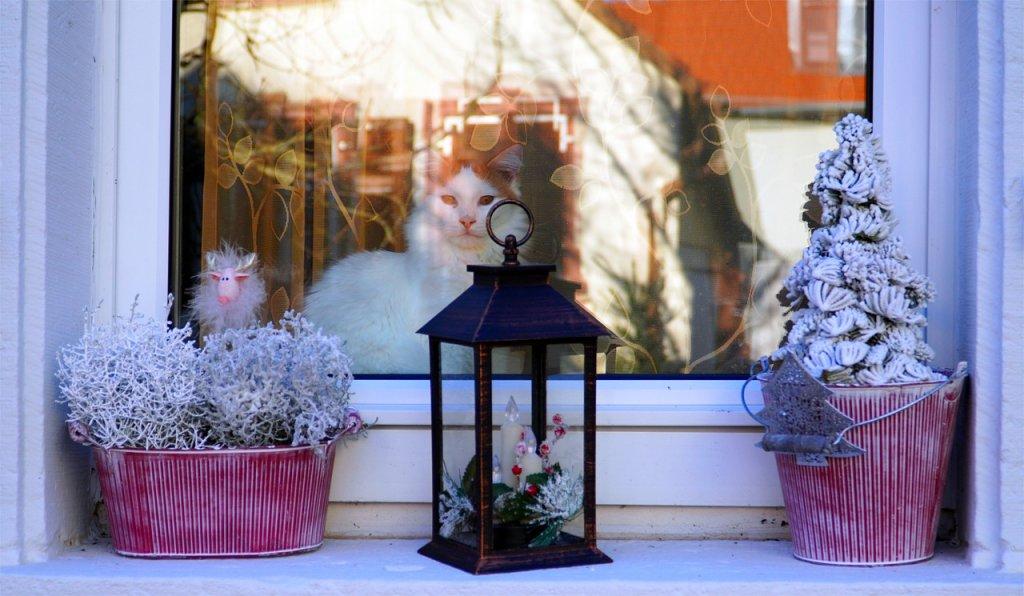 Window Decoration Cat Window Pane  - matthiasboeckel / Pixabay